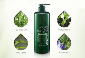 Tea_Tree_Cool_Shampoo_Saeng_Go_Meo_RI