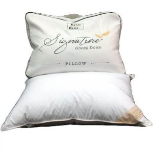 king_koil_signature_goose_down_pillow