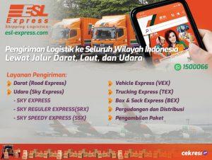 ESL Express: Pengiriman Logistik ke Seluruh Wilayah Indonesia Lewat Jalur Darat, Laut, dan Udara