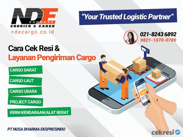 NDE Cargo: Cara Cek Resi dan Layanan Pengiriman Cargo