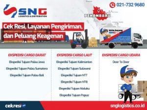 SNG Logistics: Cek Resi, Layanan Pengiriman, dan Peluang Keagenan