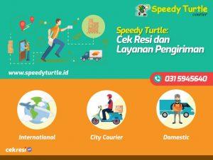 Speedy Turtle: Cek Resi dan Layanan Pengiriman