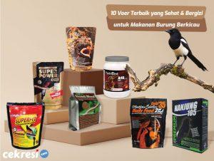 10 Rekomendasi Voer Terbaik yang Sehat dan Bergizi untuk Makanan Burung Berkicau